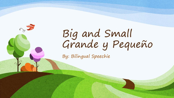 Big and Small Identification (bilingual)