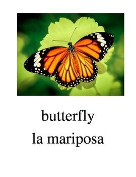 Bilingual Animals (Bugs) English and Spanish PDF