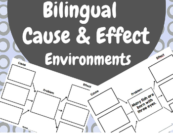 Bilingual Cause and Effect Environments (Causa  Efecto Med
