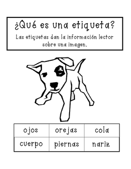 Bilingual Labeling Activity