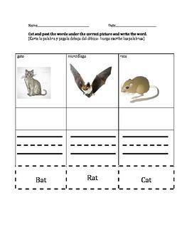 Bilingual Worksheet-Animal name match using CVC.