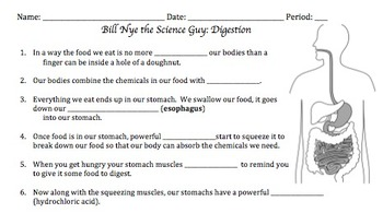 Bill Nye Digestion Video Worksheet