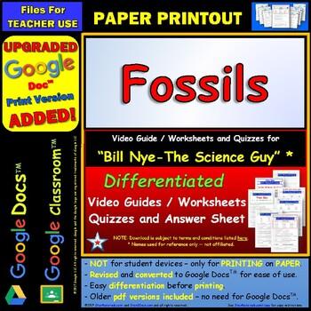 Printables Fossil Worksheets fossils worksheets versaldobip bill nye worksheet answer sheet by star materials