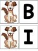 Bingo Song Cards