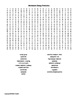 Biochemical Energy Production Vocabulary Word Search for B