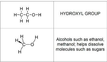 Biochemistry_Functional Groups_Card Sort
