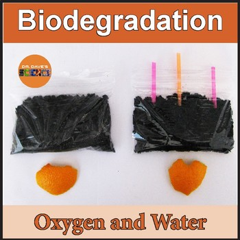 Biodegradation and Decay of Orange Peels