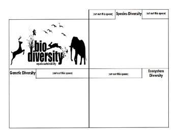 Biodiversity Equals Sustainability foldable