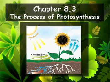 Biology - Photosynthesis (8.3 Process of Photosynthesis Pt
