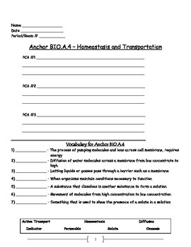 Cell Transport - Active and Passive Transport Worksheet; O