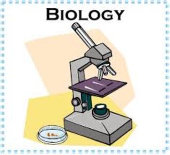 Biology - Evolution