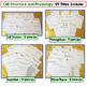 Cells, Mitosis, Photosynthesis, Respiration Interactive No