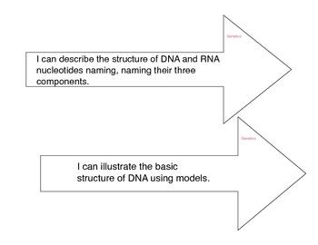 Biology Learning Targets Genetics
