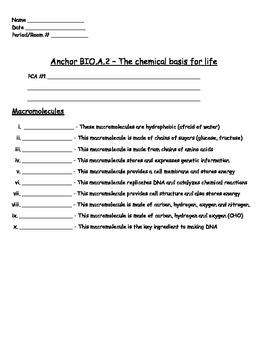 Chemical Basis for Life - Macromolecules Worksheet