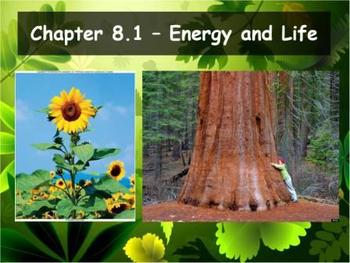 Biology - Photosynthesis (8.1 Energy and Life Powerpoint a