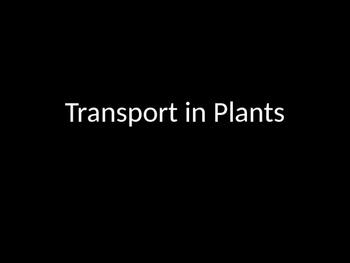 Biology! Plants: Transport