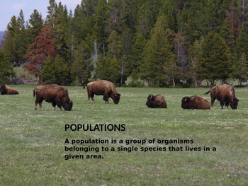 Biology Population PowerPoint