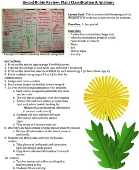 Biology Review Activity: Plant Classification & Anatomy (w