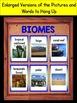 Biomes Interactive Notebook Flip-O-Rama