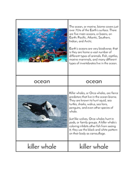 Biomes - Ocean Animals Three/Four Part Cards