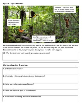 Biomes Reading, Part 1: Forests