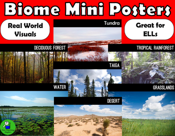 Biomes: Real World Mini Posters