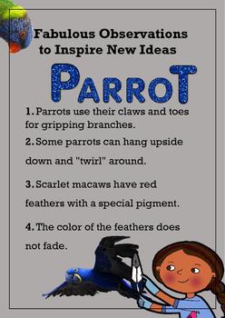 Biomimicry Fabulous Observations - Parrots