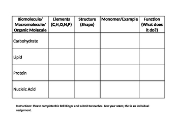 Biomolecules Graphic Organizer