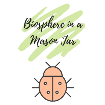Biosphere in a Mason Jar