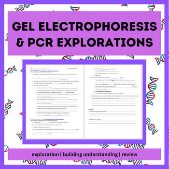 Biotechnology WebQuest