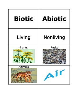 Biotic vs. Abiotic Card Sort