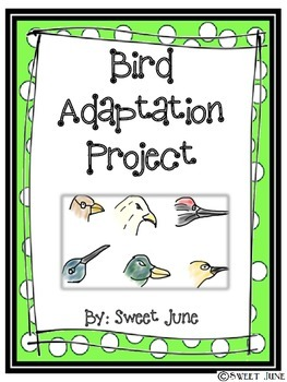 Bird Adaptation Project