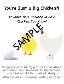 Bird/Chicken Nonfiction Packet