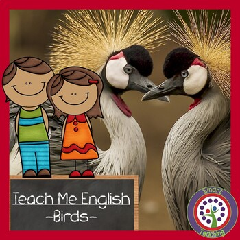 Bird Vocabulary in English - Great For ESL, ELL, Newcomers