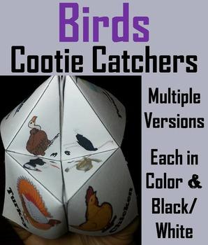 Birds Activity/ Foldable: Owl, Duck, Eagle, Vulture, Sparr
