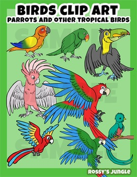 Birds: Parrots and other tropical birds clip art set