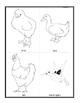 Birds' Picture Cards