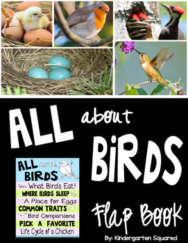 Birds Science Flip-Flap Book