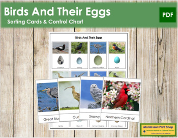 Birds and Eggs: Cards