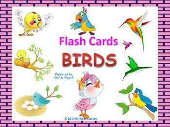 Birds flash cards