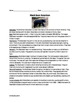 Black Bear American - Review Article Questions Vocabulary
