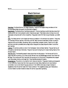 Black Caiman - Review Article Questions activies