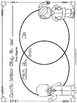 Black History Men Venn Diagrams  Printable Worksheets   Bl