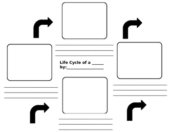 Blank Life Cycle