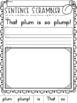 Blends {Let's Learn The Blend 'pl'} Phonics Printables