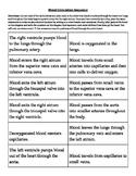Blood Circulation Sequence