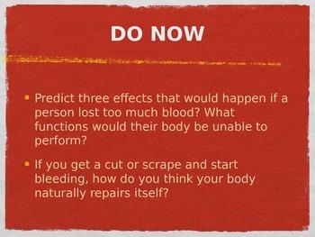 Blood Powerpoint