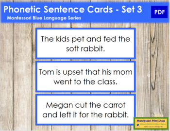 Blue: Phonetic Sentence Cards - Set 2