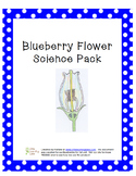 Blueberry Flower Science Pack