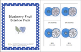 Blueberry Fruit Science Printable Pack